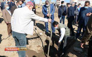 46 1 300x188 - منابع طبیعی گنبدکاووس آماده همکاری گسترش فضای سبز شهرستان+عکس