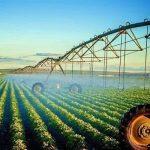 59187 150x150 - صدور پروانه حد مجاز آلایندهها برای محصولات کشاورزی گلستان