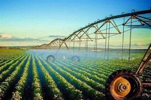 59187 300x200 - صدور پروانه حد مجاز آلایندهها برای محصولات کشاورزی گلستان