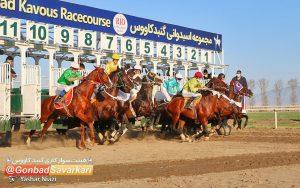 6 63 300x188 - برگزاری سه روزه کورس اسبدوانی گنبدکاووس در هفته دوازدهم
