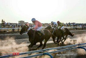 7 11 300x203 - هفته سوم مسابقات اسبدوانی کورس تابستان بندرترکمن برگزار شد+عکس