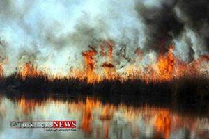 Alagol 13F 300x200 - تالاب بین المللی آلاگل در آتش سوخت
