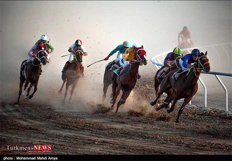 Asbdavani 20M - هفته اول مسابقات اسبدوانی کورس پاییزه آق قلا برگزار شد+عکس