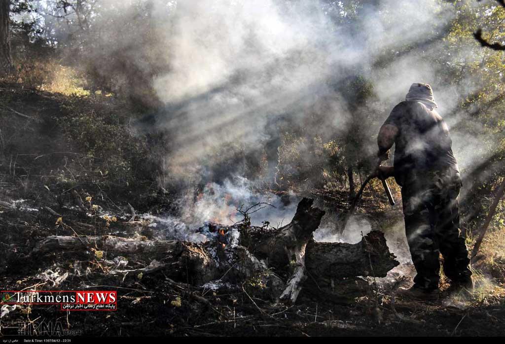 Fire 20T - حیواناتی که در آتش انسانها سوختند