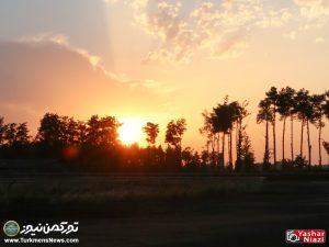 Hafteye Dovom 10 300x225 - گزارش تصویری هفته دوم مسابقات اسبدوانی بهاره گنبدکاووس