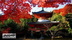 Hiroshima 5 23D 300x169 - شهری که «صلح و دوستی» صادر میکند