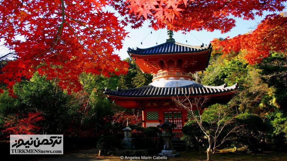 Hiroshima 5 23D - شهری که «صلح و دوستی» صادر میکند