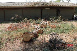 IMG 0036 300x200 - اعتبار لازم برای بازسازی و مرمت مجموعه سوارکاری گنبدکاووس تامین شد+تصاویر