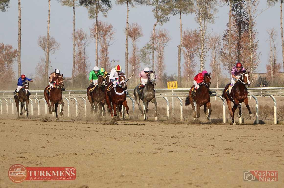 IMG 0059 - هفته دهم رقابتهای کورس اسبدوانی پاییزه گنبدکاووس برگزار شد+ عکس