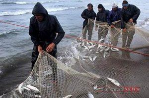 ماهیها با گمیشان قهرند