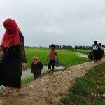 Mianmar 19 1 Sh 150x150 - آتشبس موقت شبهنظامیان روهینجایی در بحبوحه بحران انسانی