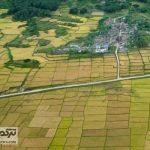 Mianmar 27Az 150x150 - ارتش میانمار خانههای مسلمانان را بعد از توافق با بنگلادش آتش زد