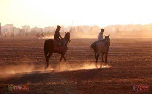 Sanat Asb ITNAnews 3 300x187 - پرورش اسب در گنبدکاووس گامی برای درآمدزایی و اشتغالزایی