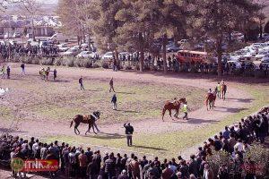 Sanat Asb ITNAnews 300x200 - پرورش اسب در گنبدکاووس گامی برای درآمدزایی و اشتغالزایی