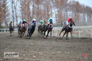 Savarkari 23Az 3 300x200 - هفته نهم رقابتهای کورس اسبدوانی پاییزه گنبدکاووس برگزار شد+ تصاویر