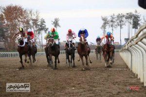 Savarkari 23Az 8 300x200 - هفته نهم رقابتهای کورس اسبدوانی پاییزه گنبدکاووس برگزار شد+ تصاویر