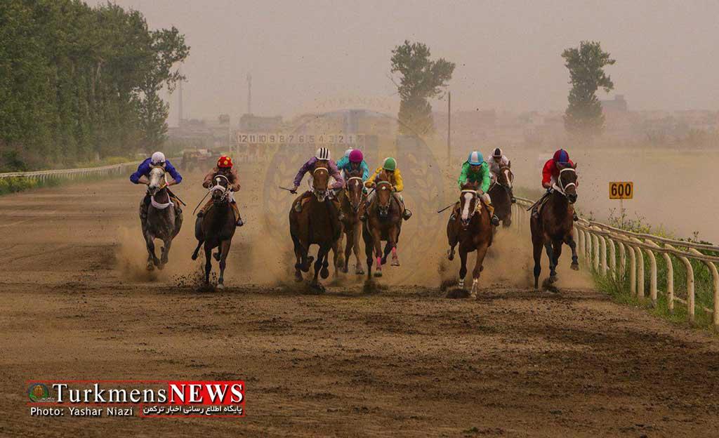Savarkari 29F - ادامه مسابقات اسبدوانی کورس بهاره گنبدکاووس تا 21 اردیبهشت ماه