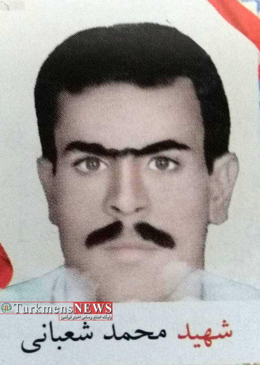 Shahid Shabani 29T - ششمین شهید راه مبارزه با قاچاق مواد مخدر گنبدکاووس+عکس