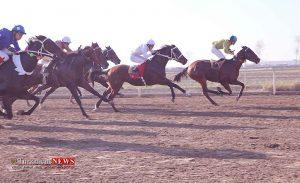 TN 2 3 H19 ASbdavani 300x183 - هفته نوزدهم کورس پاییزه اسبدوانی گنبد کاووس برگزار شد+عکس