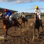 TN 2 7 150x150 - روز اول هفته چهاردهم مسابقات اسبدوانی زمستانه گنبدکاووس برگزار شد+عکس