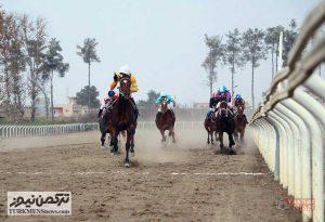 TN Horse01 300x205 - هفته هفتم رقابتهای کورس اسبدوانی پاییزه گنبد برگزار شد+عکس