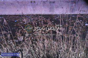 Untitled 1 13 300x197 - قلب شهرستان گمیشان با گندآب و لجنزار کانال فاضلاب جریحه دار شده است+عکس