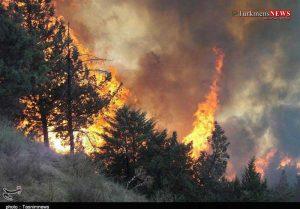 ajangal01 29sh 3 300x209 - آتشسوزی گسترده در مناطق جنگلی چاتال مراوهتپه و کلاله همچنان ادامه دارد+ تصاویر