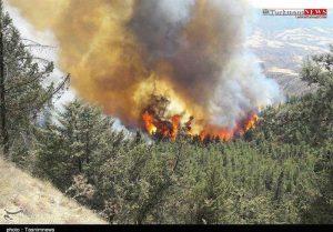 ajangal01 29sh 4 300x209 - آتشسوزی گسترده در مناطق جنگلی چاتال مراوهتپه و کلاله همچنان ادامه دارد+ تصاویر