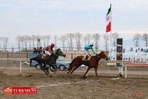 asb turkmen2 300x201 - هفته چهاردهم کورس اسبدوانی پاییزه گنبد برگزار شد+عکس
