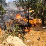 atashj 1azar 150x150 - جنگلهای منطقه «ترجنلی» حوزه تنگهراه شهرستان گالیکش دچار آتش سوزی شد