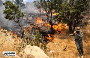 atashj 1azar 300x193 - جنگلهای منطقه «ترجنلی» حوزه تنگهراه شهرستان گالیکش دچار آتش سوزی شد