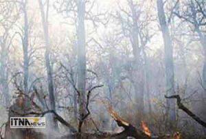 atashsoozi 10a 300x203 - آتش سوزی درعرصه های منابع طبیعی گلستان مهار شد