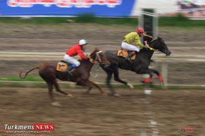dor6 2 300x199 - هفته سی و یکم مسابقات اسبدوانی کورس زمستان ۹۶ گنبدکاووس برگزار شد+عکس