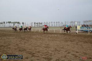 dore 4 1 300x200 - هفته بیست و دوم رقابتهای اسبدوانی کورس زمستان 96 گنبدکاووس برگزار شد+عکس