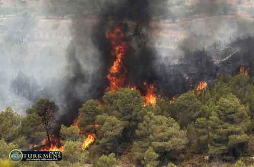 golestan 16az - آتشسوزی به جنگل گلستان رسید