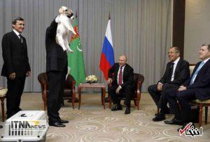 hedie1 19m 300x204 - رییس جمهور ترکمنستان به پوتین سگ هدیه داد +عکس