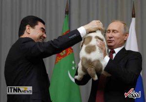 hedie3 19m 300x209 - رییس جمهور ترکمنستان به پوتین سگ هدیه داد +عکس