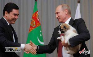 hedie4 19m 300x185 - رییس جمهور ترکمنستان به پوتین سگ هدیه داد +عکس