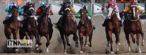 horse 4 300x114 - نخستین حضور رسمی ایران در مجمع عمومی فدراسیون جهانی اسبدوانی
