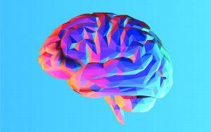 how your brain creates your sense of self w1200 300x188 - چرا انسان خواب میبیند و چطور از ذهن خود محافظت میکند؟