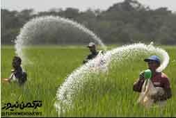 نگرانی کشاورزان گلستان از تأمین کود