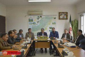 koshtargah 4d 300x200 - احداث کشتارگاه صنعتی دام با سرمایه گذاری بخش خصوصی در گنبدکاووس
