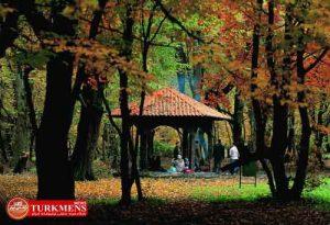 park 25d 300x205 - تفرجگاههای جنگلی به 8 هزار هکتار افزایش یافت