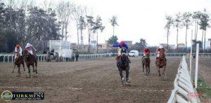 photo 2018 02 01 17 10 44 300x147 - هفته بیست و سوم رقابتهای اسبدوانی کورس زمستان 96 گنبدکاووس برگزار شد+عکس