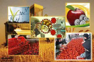 غفلت از ظرفیت کشاورزی گلستان/موازی کاری در صنایع تبدیلی مشهود است