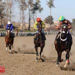 savarkari1 7d 150x150 - هفته سیزدهم رقابتهای کورس اسبدوانی پاییزه گنبد برگزار شد+عکس