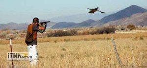 shekar 27m 300x139 - شکار پرنده ممنوع