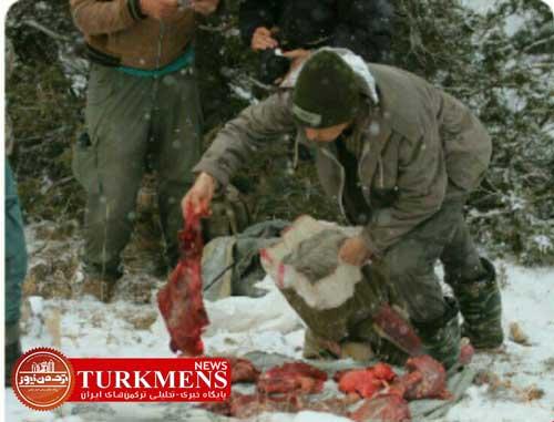 shekarchi 29d - دستگیری شکارچی سابقهدار در پارک ملی گلستان